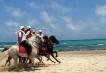 АLL Inclusive – Почивки в Тунис с полет от Варна - Vincci Rosa Beach 4* Premium